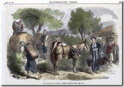 CWH - 1868 Illustr News Engraving Vendange in Cyprus