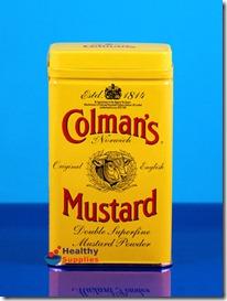 colmans-mustard-powder-113g