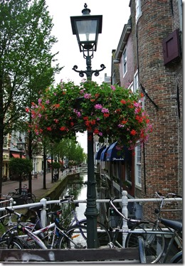 NED24 - Delft - water, flowers, boked, lamps